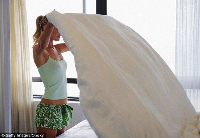 Чем же так опасны паразиты, живущие в постели и рядом с нею?