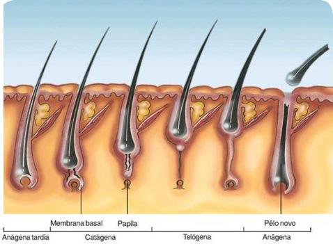 Услуги центра косметологии. Процедура лазерной эпиляции волос