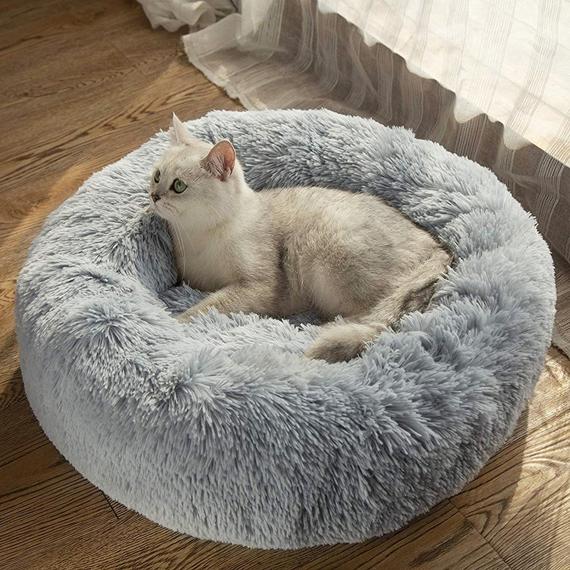 Какой размер лежака для кота или собаки будет комфортным
